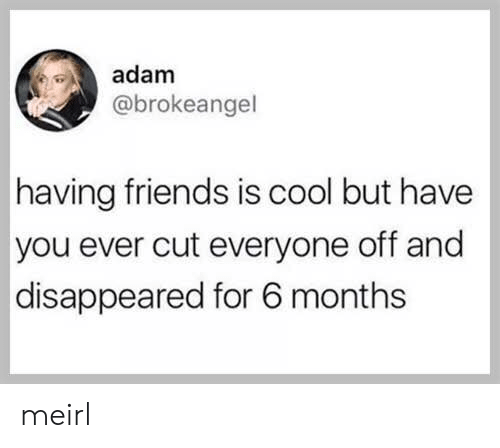 disappeared: adam  @brokeangel  having friends is cool but have  you ever cut everyone off and  disappeared for 6 months meirl