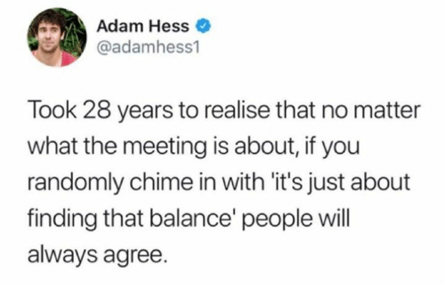 Dank, 🤖, and Hess: Adam Hess  @adamhess1  Took 28 years to realise that no matter  what the meeting is about, if you  randomly chime in with it's just about  finding that balance' people will  always agree