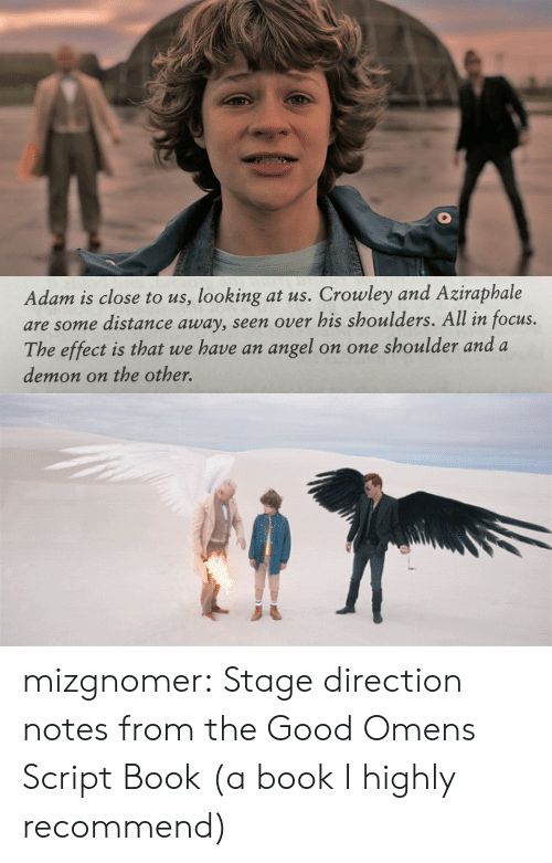 Target, Tumblr, and Angel: Adam is close to us, looking at us. Crowley and Aziraphale  are some distance away, seen over his shoulders. All in focus.  The effect is that we have an angel  on one shoulder and a  demon on the other. mizgnomer:  Stage direction notes from the Good Omens Script Book (a book I highly recommend)