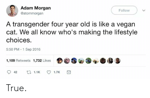 a transgender: Adam Morgan  @atommorgan  Follow  A transgender four year old is like a vegan  cat. We all know who's making the lifestyle  choices.  5:50 PM 1 Sep 2016  1,109 Retweets 1,732 Likes  42 11K 17k e True.
