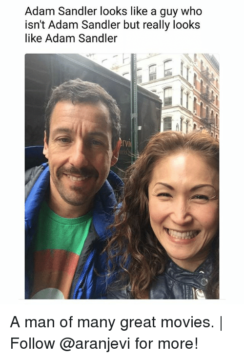 Adam Sandler: Adam Sandler looks like a guy who  isn't Adam Sandler but really looks  like Adam Sandler  『VI A man of many great movies. | Follow @aranjevi for more!