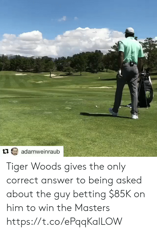 Sports, Tiger Woods, and Masters: adamweinraub Tiger Woods gives the only correct answer to being asked about the guy betting $85K on him to win the Masters https://t.co/ePqqKalLOW