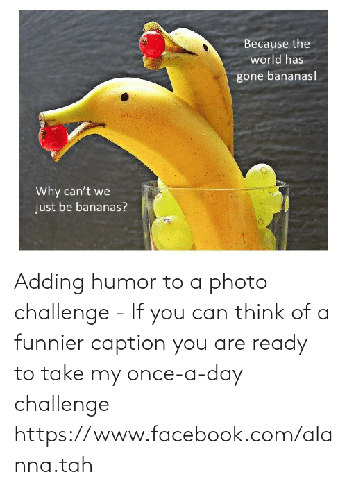 facebook.com: Adding humor to a photo challenge - If you can think of a funnier caption you are ready to take my once-a-day challenge https://www.facebook.com/alanna.tah