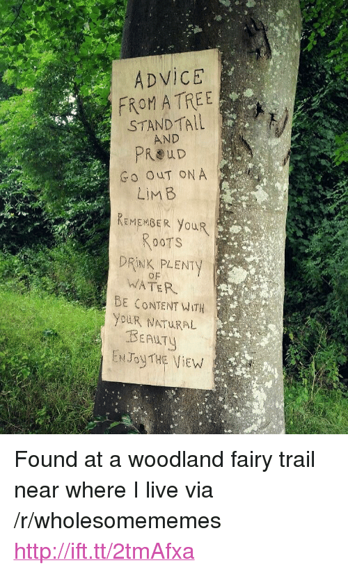 "woodland: ADVICE  FROM ATREE  STANDTALL  AND  Go OuT ON A  REMEMBER YouR  RooTS  DRINK PLENTY  of  WATER  BE CONTENT WITH  YDuR NATURAL  ENJoyTHE ViEW <p>Found at a woodland fairy trail near where I live via /r/wholesomememes <a href=""http://ift.tt/2tmAfxa"">http://ift.tt/2tmAfxa</a></p>"