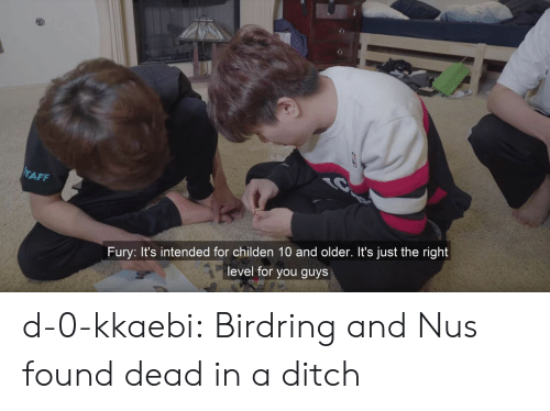 ditch: AFF  Fury: It's intended for childen 10 and older. It's just the right  level for you guys d-0-kkaebi:  Birdring and Nus found dead in a ditch