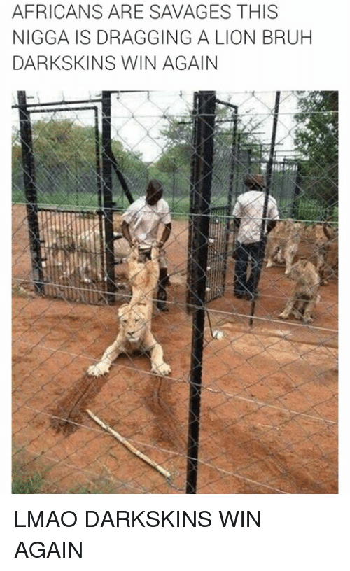 Darkskins: AFRICANS ARE SAVAGES THIS  NIGGA IS DRAGGING A LION BRUH  DARK SKINS WIN AGAIN LMAO DARKSKINS WIN AGAIN