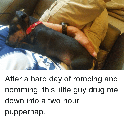 Drug, Down, and Day