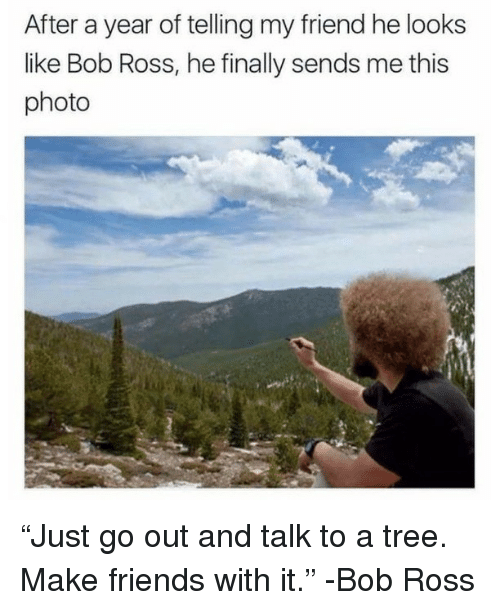 """Friends, Memes, and Bob Ross: After a year of telling my friend he looks  like Bob Ross, he finally sends me this  photo """"Just go out and talk to a tree. Make friends with it."""" -Bob Ross"""