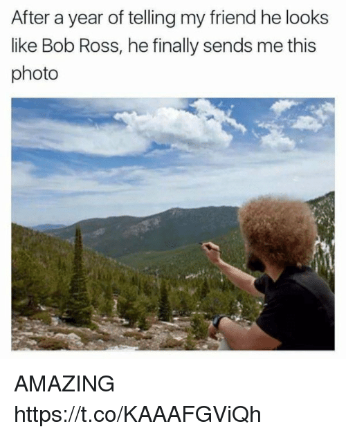 Funny, Bob Ross, and Amazing: After a year of telling my friend he looks  like Bob Ross, he finally sends me this  photo AMAZING https://t.co/KAAAFGViQh