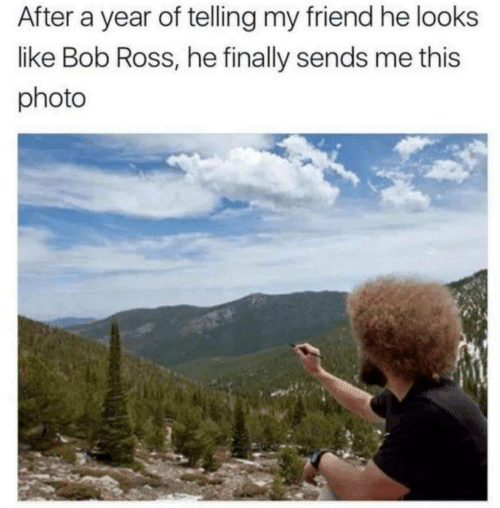 Bob Ross, Ross, and Friend: After a year of telling my friend he looks  like Bob Ross, he finally sends me this  photo