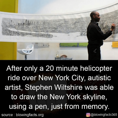 skyline: After only a 20 minute helicopter  ride over New York City, autistic  artist, Stephen Wiltshire was able  to draw the New York skyline,  using a pen, just from memory.  source blowingfacts.org  O@blowingfacts365