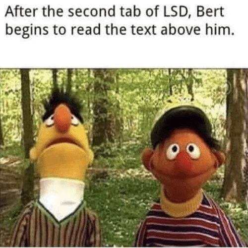 Text, Lsd, and Him: After the second tab of LSD, Bert  begins to read the text above him