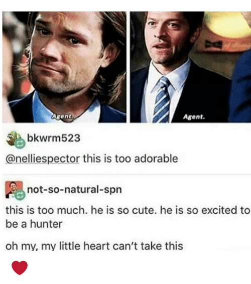 Excits: Agent.  Agent  bkwrm523  anelliespector this is too adorable  not-so-natural-spn  this is too much. he is so cute. he is so excited to  be a hunter  oh my, my little heart can't take this ❤