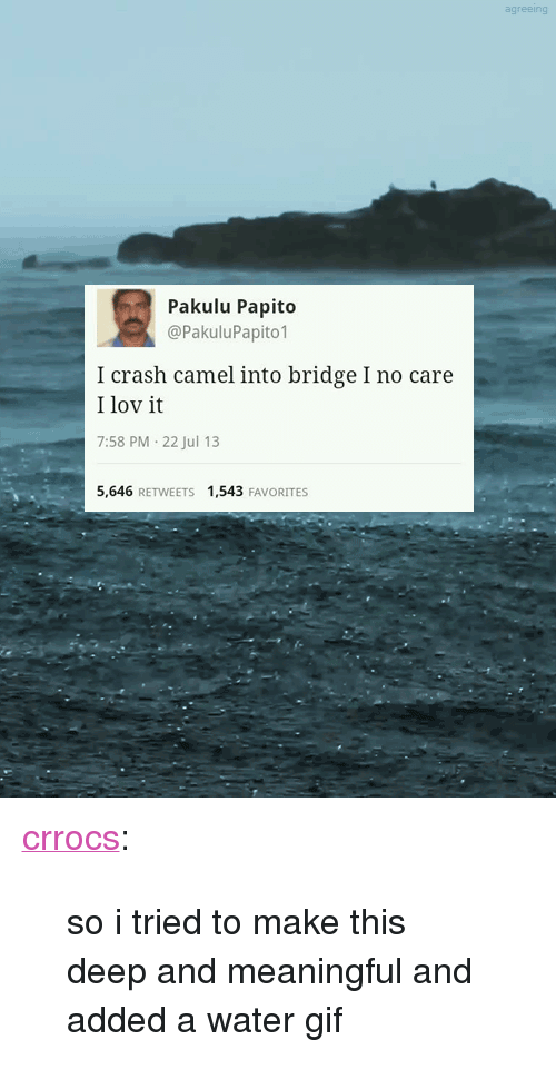 """Pakulu Papito: agreeing  Pakulu Papito  @PakuluPapito1  I crash camel into bridge I no care  I lov it  7:58 PM-22 Jul 13  5,646 RETWEETS 1,543 FAVORITES <p><a class=""""tumblr_blog"""" href=""""http://crrocs.tumblr.com/post/56412557360/so-i-tried-to-make-this-deep-and-meaningful-and"""" target=""""_blank"""">crrocs</a>:</p> <blockquote> <p>so i tried to make this deep and meaningful and added a water gif</p> </blockquote>"""