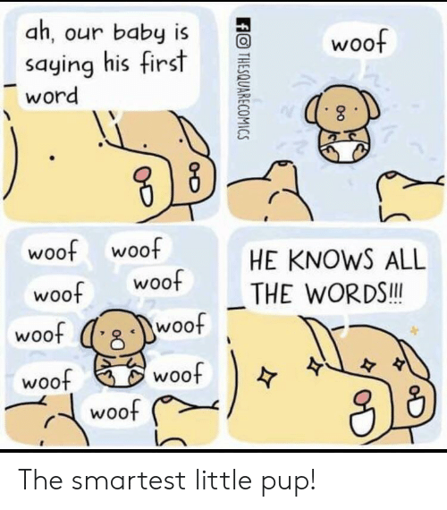Woot, Word, and Pup: ah, our baby is  saying his first  word  O woof  2  웅  woof woof  HE KNOWS ALL  woot THE WORDS  woof  woo  woof  woof  수  从13  r、( woof The smartest little pup!