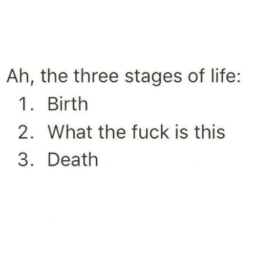 Life, Death, and Fuck: Ah, the three stages of life:  1. Birth  2. What the fuck is this  3. Death