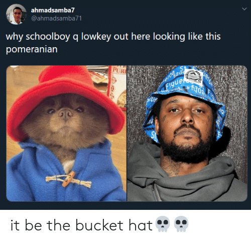 ScHoolboy Q: ahmadsamba7  @ahmadsamba71  why schoolboy q lowkey out here looking like this  pomeranian  PUR  Figue  308 it be the bucket hat💀💀