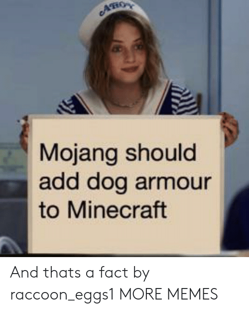 Dank, Memes, and Minecraft: AHO  Mojang should  add dog armour  to Minecraft And thats a fact by raccoon_eggs1 MORE MEMES