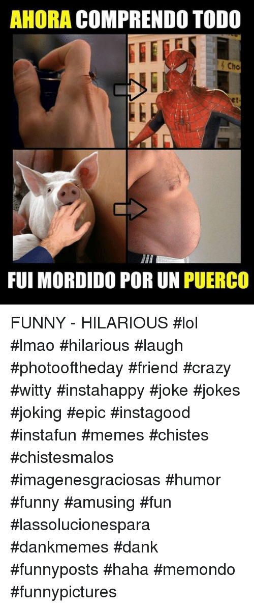 Crazy, Dank, and Funny: AHORA COMPRENDO TODO  Cho  et  FUI MORDIDO POR UN PUERCO FUNNY - HILARIOUS  #lol #lmao #hilarious #laugh #photooftheday #friend #crazy #witty #instahappy #joke #jokes #joking #epic #instagood #instafun  #memes #chistes #chistesmalos #imagenesgraciosas #humor #funny  #amusing #fun #lassolucionespara #dankmemes  #dank  #funnyposts #haha #memondo #funnypictures