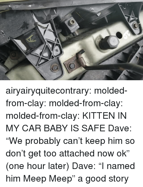 "Target, Tumblr, and Blog: airyairyquitecontrary: molded-from-clay:  molded-from-clay:  molded-from-clay: KITTEN IN MY CAR BABY IS SAFE    Dave: ""We probably can't keep him so don't get too attached now ok"" (one hour later) Dave: ""I named him Meep Meep""  a good story"