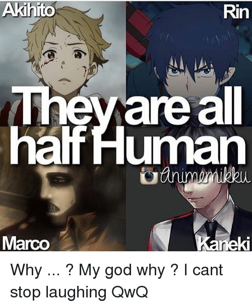 God, Why, and Rin: Akihito  Rin  halfHuman  Marco  ki Why ... ? My god why ? I cant stop laughing QwQ