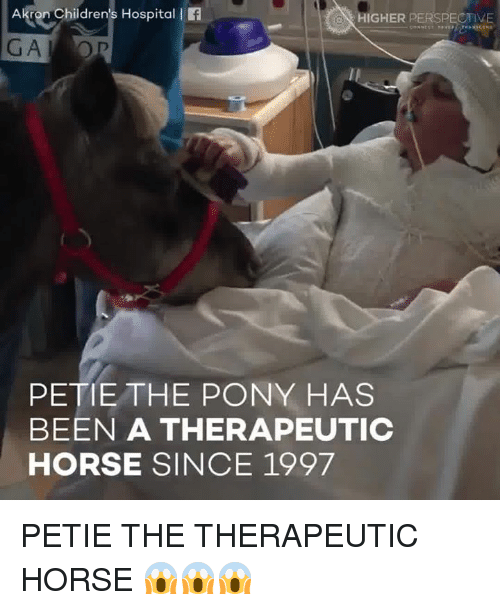 hospitable: Akron Children's Hospital l  HIGHER PERSPECTIVE  PETE THE PONY HAS  BEEN A THERAPEUTIC  HORSE SINCE 1997 PETIE THE THERAPEUTIC HORSE 😱😱😱