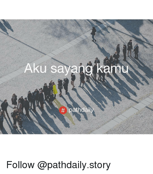 Indonesian (Language), Following, and Amu: Aku sa  tt pathdail  amu Follow @pathdaily.story