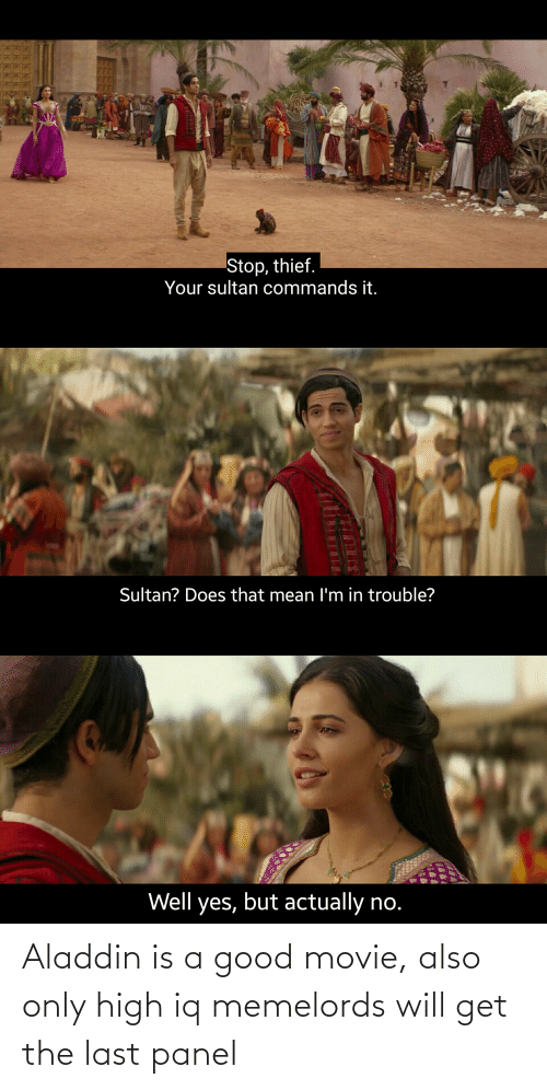 Aladdin: Aladdin is a good movie, also only high iq memelords will get the last panel