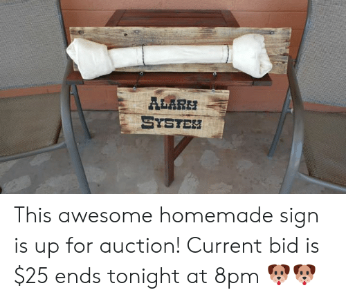 Memes, Alarm, and Awesome: ALARM  SYSTEH This awesome homemade sign is up for auction! Current bid is $25 ends tonight at 8pm 🐶🐶