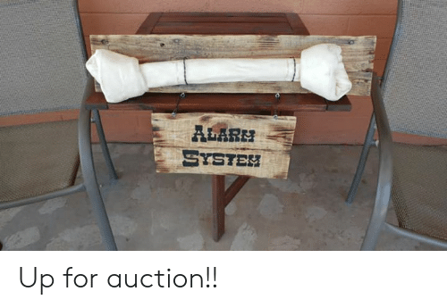 Memes, Alarm, and 🤖: ALARM  SYSTEH Up for auction!!