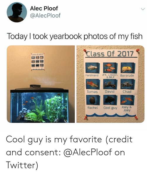 Ass, Twitter, and Cool: Alec Ploof  @AlecPloof  Today I took yearbook photos of my fish  Class Of 2017  ass Of 2017  Ferdinand JFK, Lincoln, Bertrude  &MLK  Tomas  Chad  David  Cool guy Joey&  Joey  Rachel Cool guy is my favorite (credit and consent: @AlecPloof on Twitter)