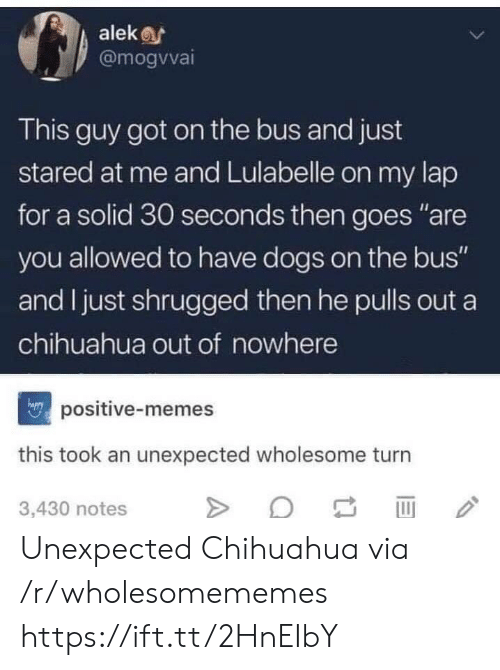 "chihuahua: alek  @mogvvai  This guy got on the bus and just  stared at me and Lulabelle on my lap  for a solid 30 seconds then goes ""are  you allowed to have dogs on the bus""  and I just shrugged then he pulls out a  chihuahua out of nowhere  positive-memes  this took an unexpected wholesome turn  3,430 notes Unexpected Chihuahua via /r/wholesomememes https://ift.tt/2HnEIbY"