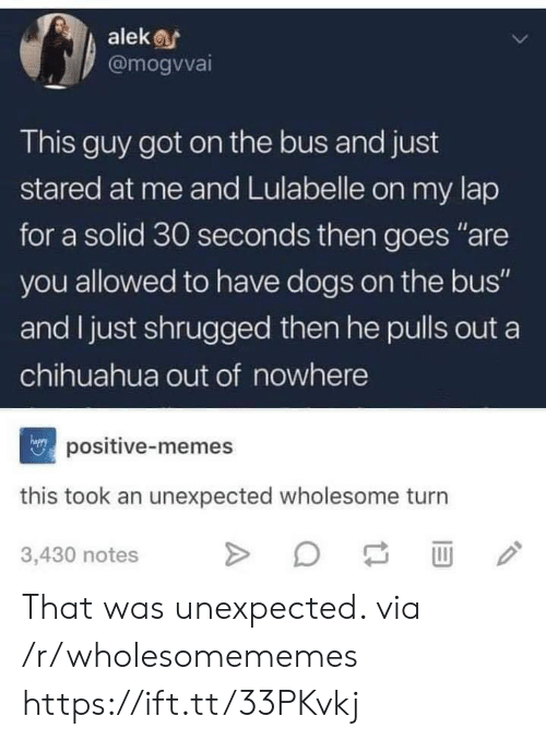 "chihuahua: alek  @mogvvai  This guy got on the bus and just  stared at me and Lulabelle on my lap  for a solid 30 seconds then goes ""are  you allowed to have dogs on the bus""  and I just shrugged then he pulls out a  chihuahua out of nowhere  npositive-memes  this took an unexpected wholesome turn  3,430 notes That was unexpected. via /r/wholesomememes https://ift.tt/33PKvkj"
