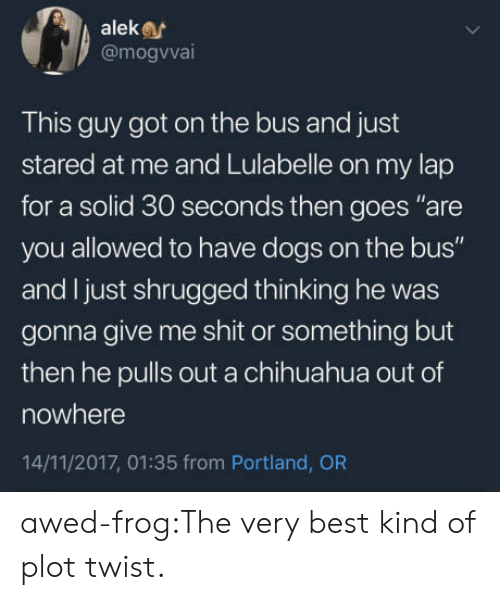 """portland: aleke  @mogvva  This guy got on the bus and just  stared at me and Lulabelle on my lap  for a solid 30 seconds then goes """"are  you allowed to have dogs on the bus""""  and I just shrugged thinking he was  gonna give me shit or something but  then he pulls out a chihuahua out of  nowhere  14/11/2017, 01:35 from Portland, OR awed-frog:The very best kind of plot twist."""