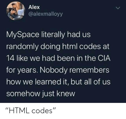 """MySpace, Been, and How: Alex  @alexmalloyy  MySpace literally had us  randomly doing html codes at  14 like we had been in the CIA  for years. Nobody remembers  how we learned it, but all of us  somehow just knew """"HTML codes"""""""