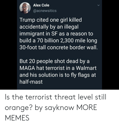 Maga: Alex Cole  @acnewsitics  Trump cited one girl killed  accidentally by an illegal  immigrant in SF as a reason to  build a 70 billion 2,300 mile long  30-foot tall concrete border wall.  But 20 people shot dead by a  MAGA hat terrorist in a Walmart  and his solution is to fly flags at  half-mast Is the terrorist threat level still orange? by sayknow MORE MEMES