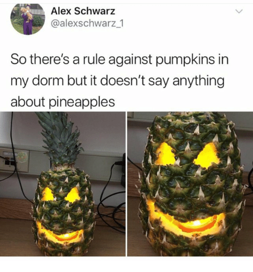 Say Anything..., Alex, and Anything: Alex Schwarz  @alexschwarz _1  So there's a rule against pumpkins in  my dorm but it doesn't say anything  about pineapples