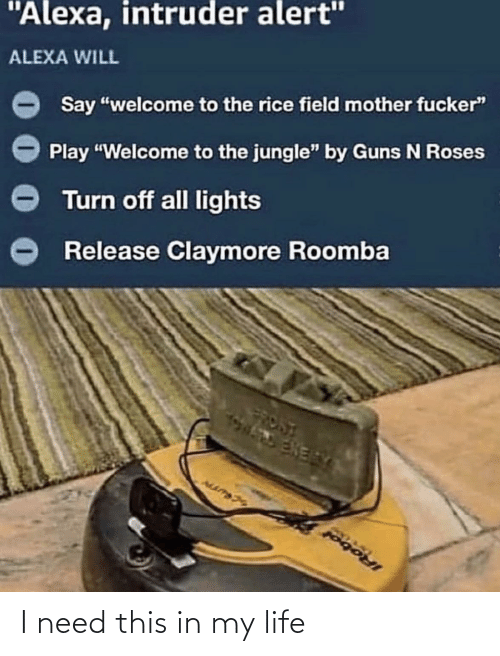 "roses: ""Alexa, intruder alert""  ALEXA WILL  Say ""welcome to the rice field mother fucker""  Play ""Welcome to the jungle"" by Guns N Roses  Turn off all lights  Release Claymore Roomba  FRONT  ENERY  IRobol I need this in my life"