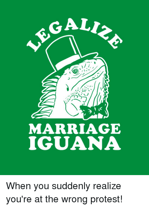 sudden realization: ALI  ®.®.irノヘ  1に  MARRIAGE  IGUANA When you suddenly realize you're at the wrong protest!