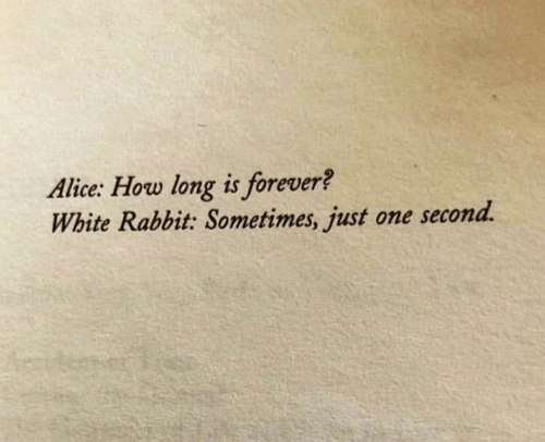 Forever, Rabbit, and White: Alice: How long is forever?  White Rabbit: Sometimes, just one second.