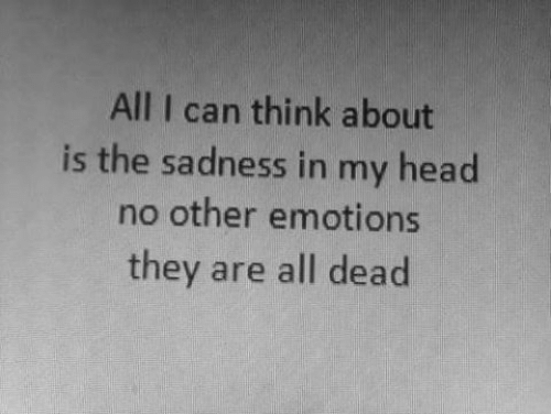 No Other: All I can think about  is the sadness in my head  no other emotions  they are all dead
