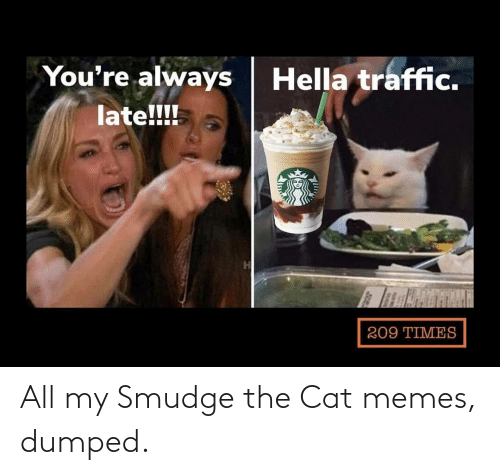 Dumped: All my Smudge the Cat memes, dumped.