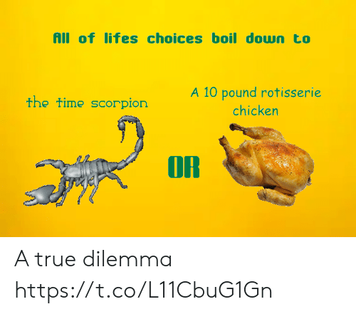 Scorpion: All of lifes choices boil down to  A 10 pound rotisserie  the time scorpion  chicken  OR A true dilemma https://t.co/L11CbuG1Gn