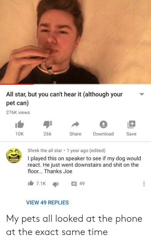 speaker: All star, but you can't hear it (although your  pet can)  276K views  +  266  Share  10K  Download  Save  Shrek the all star  1 year ago (edited)  I played this on speaker to see if my dog would  react. He just went downstairs and shit on the  floor... Thanks Joe  7.1K  49  VIEW 49 REPLIES My pets all looked at the phone at the exact same time