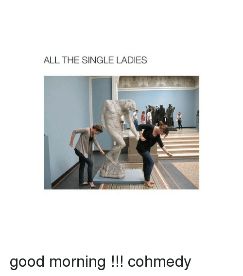 Good Morning, Good, and Girl Memes: ALL THE SINGLE LADIES good morning !!! cohmedy