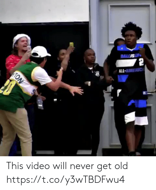 Memes, Video, and Old: ALL  TON This video will never get old https://t.co/y3wTBDFwu4