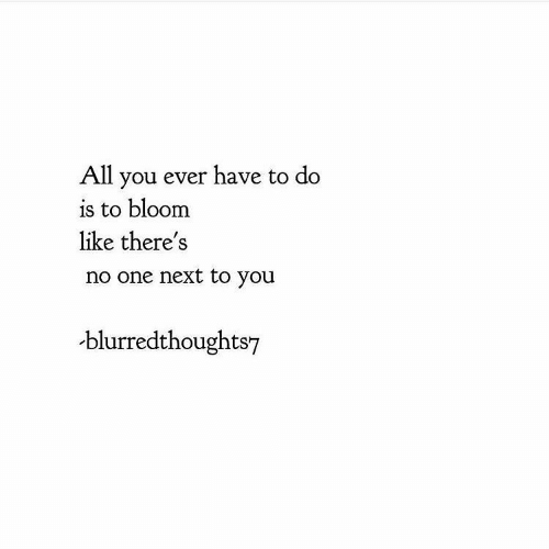 Next, One, and All: All you ever have to do  is to bloom  like there's  no one next to you  blurredthoughts7