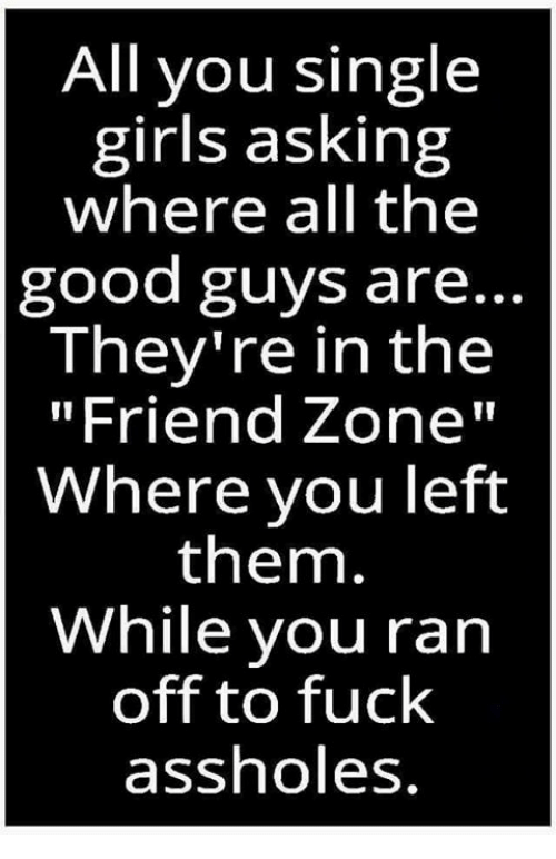 """the good guys: All you single  girls asking  where all the  good guys are..  They're in the  """"Friend Zone""""  Where you left  them.  While you ran  off to fuck  assholes"""