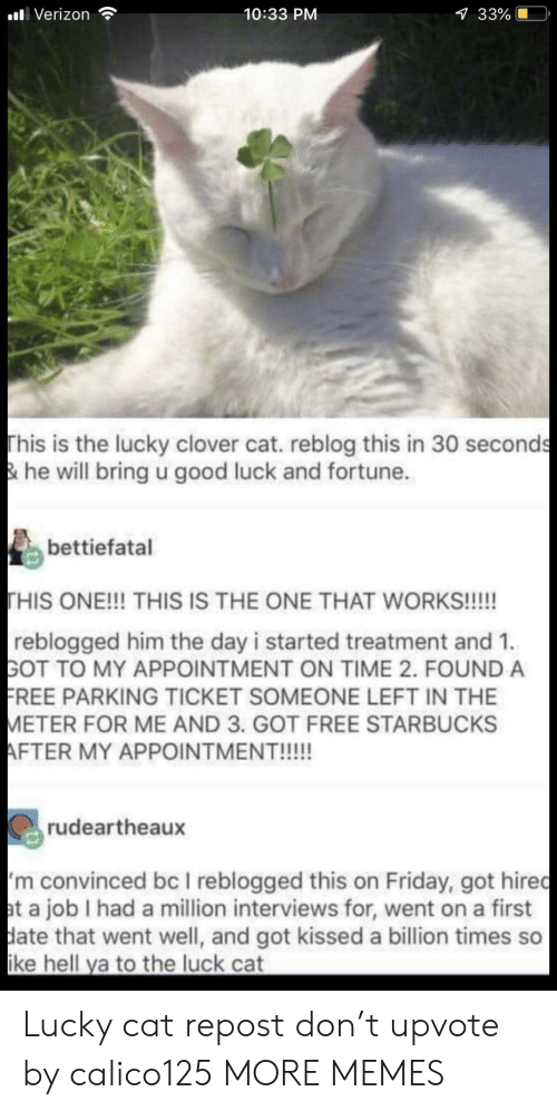 Dank, Friday, and Memes: alli Verizon  10:33 PM  33%  This is the lucky clover cat. reblog this in 30 seconds  & he will bring u good luck and fortune.  bettiefatal  HIS ONE!!! THIS IS THE ONE THAT WORKS!!!!!  reblogged him the day i started treatment and 1.  GOT TO MY APPOINTMENT ON TIME 2. FOUND A  REE PARKING TICKET SOMEONE LEFT IN THE  ETER FOR ME AND 3. GOT FREE STARBUCKS  rudeartheaux  m convinced bc I reblogged this on Friday, got hiredc  t a job I had a million interviews for, went on a first  ate that went well, and got kissed a billion times so  ke hell ya to the luck cat Lucky cat repost don't upvote by calico125 MORE MEMES