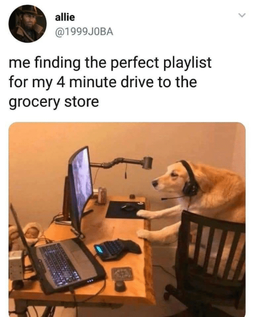 Drive, Store, and For: allie  @1999J0BA  me finding the perfect playlist  for my 4 minute drive to the  grocery store